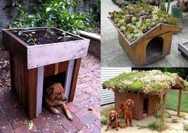 Dog House Interior 20 Awesome Outdoor Dog Houses Home Design And Interior Small