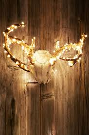 498 best antlers images on pinterest antlers home and live