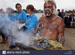 australian native plants sydney sydney australia 6th september 2015 an aboriginal man burns