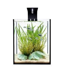 51 best fish tank ideas images on fish tanks