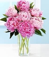 Flower Love Pics - best 10 most beautiful flowers ideas on pinterest glowing