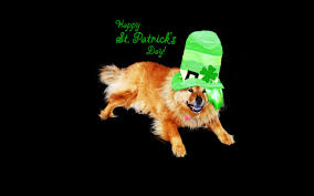 st patrick u0027s day wallpapers by kate net
