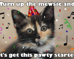 Funny Cat Birthday Meme - kitten birthday card etsy