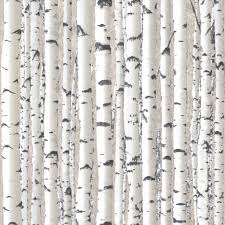 blooming wall 60033 birch tree wallpaper wall mural wall paper silver birch branches white trees wallpaper forest feature wall woods 1279 in home furniture diy diy materials wallpaper accessories wallpaper rolls