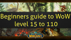 beginners guide to world of warcraft level 15 to 110 and your