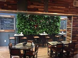 city plantscaping denver office plants interior plant service