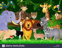 safari cartoon animal africa jungle illustration safari cartoon forest stock