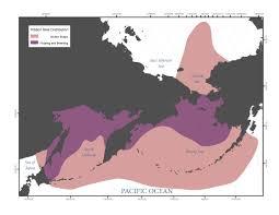 Seal Ribbon National Marine Mammal Laboratory