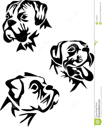 boxer clipart vector pencil and in color boxer clipart vector