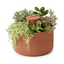 herbs planter kitchen indoor herb planters u2014 eatwell101