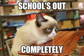 Schools Out Meme - school s out completely grumpy cat lunch quickmeme