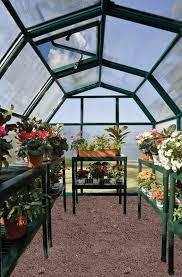 Palram Greenhouse Rion Eco Grow 2 6x8 Greenhouse Hg7008 Free Shipping