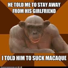 Sexy Monkey Meme - atypical anthro ape
