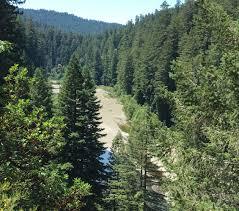 the race to 400 feet verylargeandtallredwoods