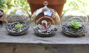 decorating inspiring diy hanging terrarium with glass globe and