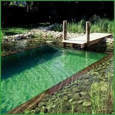 how to build a natural swimming pool diy natural swimming