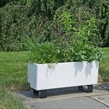 self watering planter box white flower farm