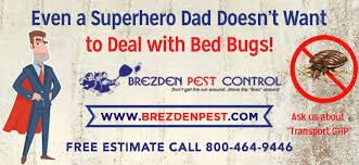 Dont Let The Bed Bugs Bite Bed Bugs Archives 805 544 9446 Pest Control In San Luis