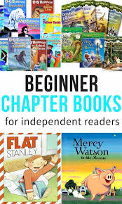 jeff janssen books beginner chapter books for independent readers some the wiser