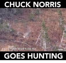 Hunting Meme - chuck norris sdurce video stuck n the rut goes hunting chuck