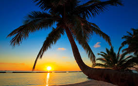 979 beach wallpapers for free download wallpaper better