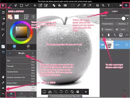 introduction to medibang paint pro for coloring grayscale coloring
