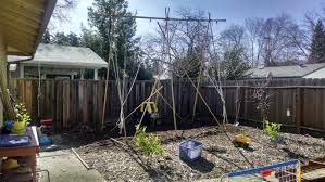 teepee redesign to a proper hop trellis homebrewing