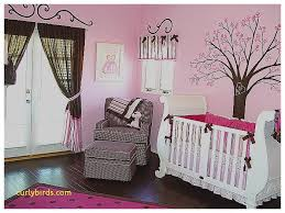 inspirational baby nursery decorating ideas pictures