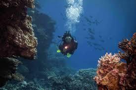 padi advanced open water course l el nido