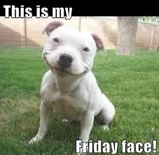 Happy Friday Memes - 50 best friday memes memes about friday