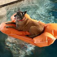 Floating Dog Bed Dog Pool Float And Lounger Frontgate