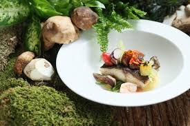 stages de cuisine cucina stages the king of mushrooms porcini malaysian foodie