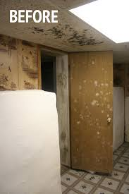 White Mildew In Basement How To Remove Mold U0026 Mildew From Your Basement Part 1 U2014 Stevie