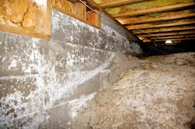 basement vapor barrier or not crawl space vapor barrier installation bonded waterproofing systems