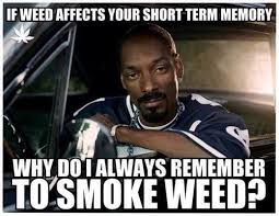 Funny Memes About Weed - funny smoking weed memes image memes at relatably com