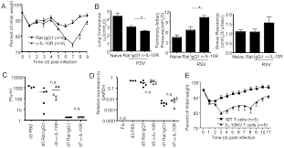 autocrine regulation of pulmonary inflammation by effector t cell
