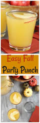 easy fall party punch simple 3 ingredient recipe