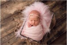 newborn photographers posts tagged canadian newborn photographers fresh photography