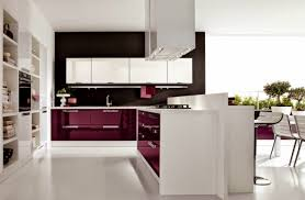 Indian Open Kitchen Designs Tag For Indian Open Kitchen Nanilumi