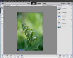 amazon com customer reviews adobe photoshop elements 15 download i ve been using photoshop elements since version 2 and i firmly believe photoshop elements is the best photo editing software there is for under 100