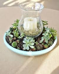 candle centerpiece succulent candle centerpiece