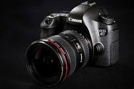 canon 6d black friday 2017 michael daniel ho the wildlife ho tographer canon eos 6d