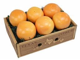fruit club monthly fruit club zeys of