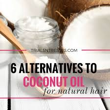 6 alternatives to coconut oil for natural hair trials n tresses