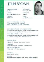 cv resume sample pdf cv template in pdf format