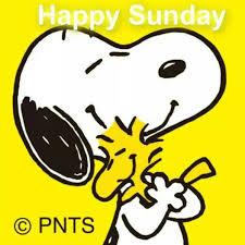 imagenes de snoopy deseando feliz domingo happy sunday snoopy pinterest buen día