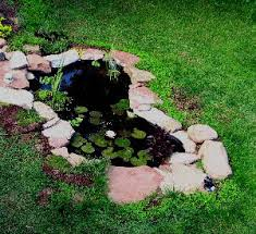 Backyard Pond Supplies by Acadian Aquatic Systems Pond Supply Aeration Water Gardens