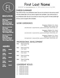resume template professional resume templates that stand out professional it resumes director