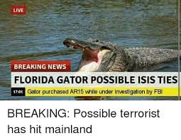 Gator Meme - live breaking news florida gator possible isis ties gator purchased