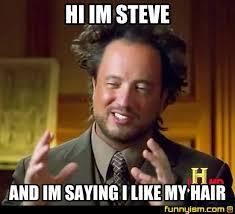 Steve Meme - hi im steve and im saying i like my hair meme factory funnyism